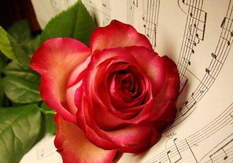 08 Марта — Концерт «От всего сердца» на Привокзальной площади