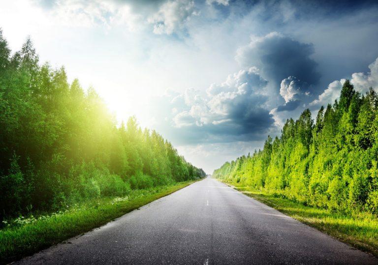 08 февраля — Мастер-класс «Дорога в лес», изучаем технику передачи перспективы.