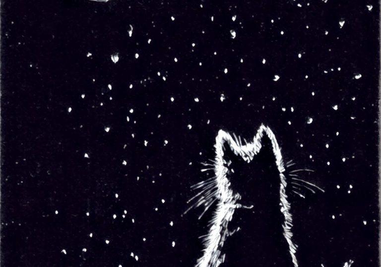 23 марта мастер-класс «Лунный кот», рисунок на черной бумаге белым карандашом