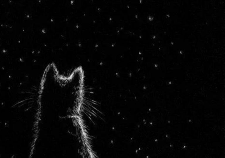 8 июня мастер-класс «Созвездие КотЭ», рисунок, черная бумага, белый карандаш